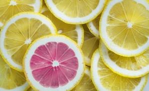 lemon-3303842_640