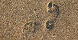 footprint-2353510_640